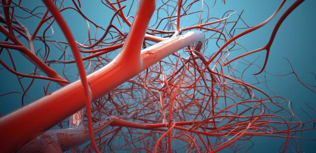 Нормализация процесса кровообращения