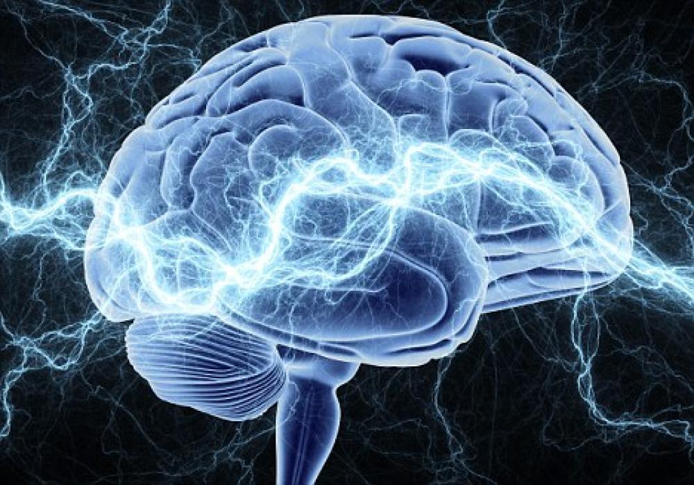 Активизирует функционирование головного мозга