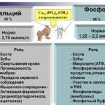 Дефицит кальция и фосфора в организме