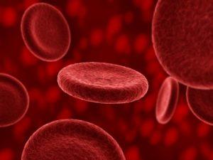 Клетки плазмы