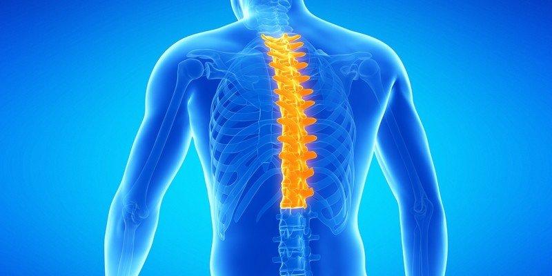Признаки остеохондроза в грудном отделе