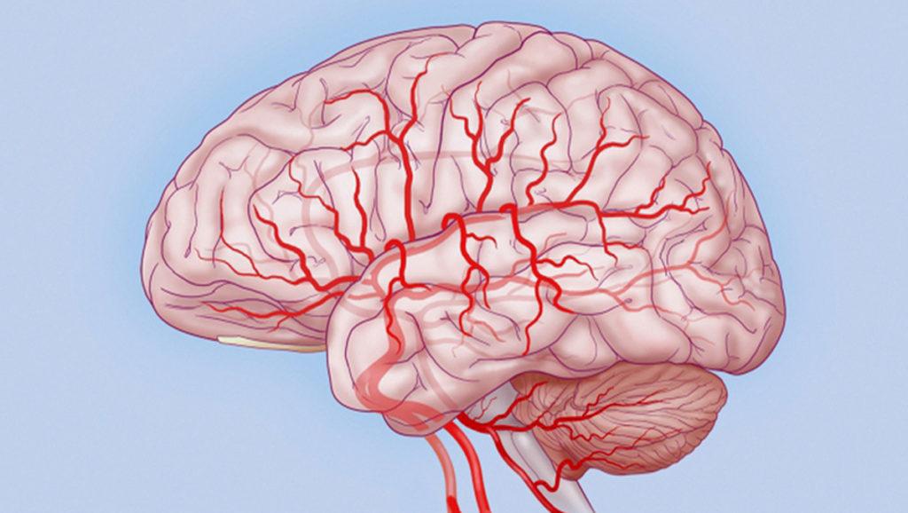 Улучшение кровоснабжения ткани головного мозга