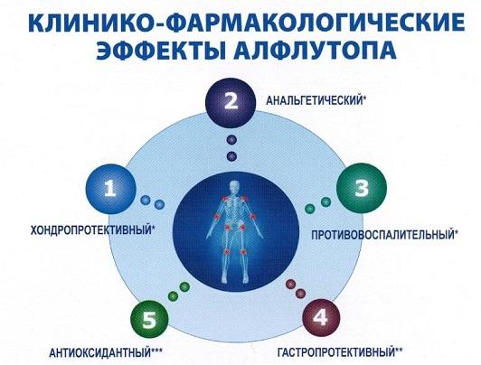 Фармакологические эффекты препарата