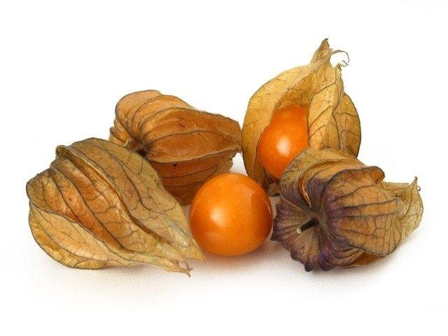 Применение плодов физалиса