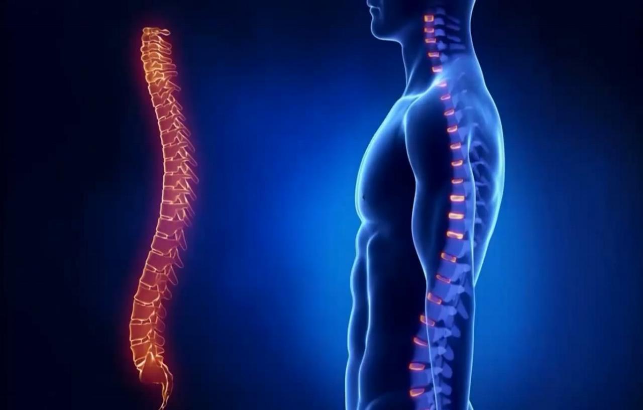 Локализация травм спинного мозга
