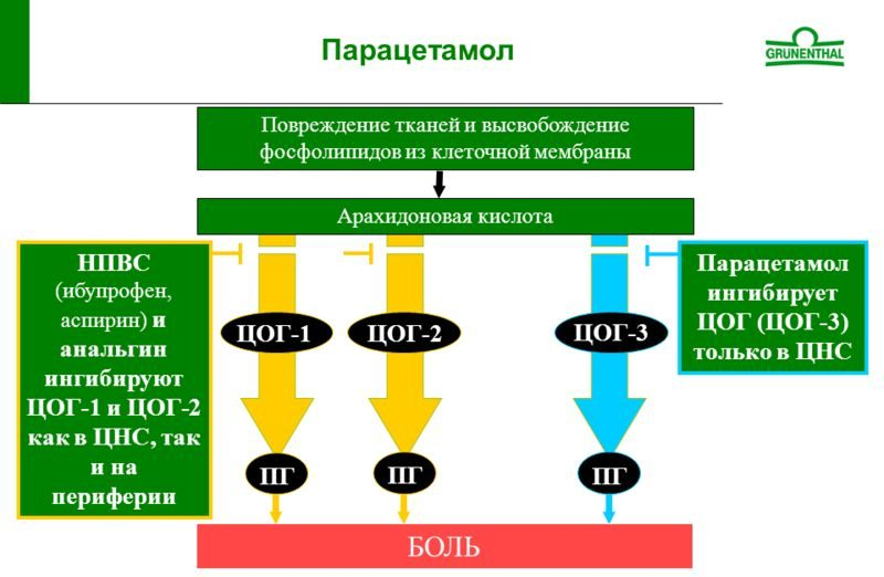 Фармакология парацетамола